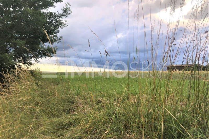 Vue dérrière la maison en bordure de zone agricole