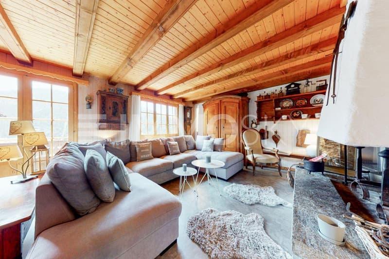 Magnifique séjour avec cheminée