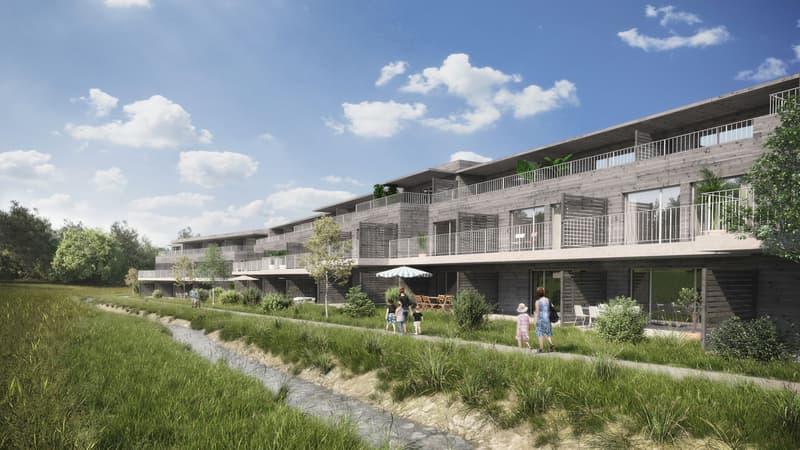 5.5-Zi-Reiheneinfamilienhäuser im Grünen, je nach Typ auf 6.5-Zimmer ausbaubar (1)