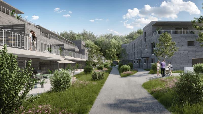 5.5-Zi-Reiheneinfamilienhäuser im Grünen, je nach Typ auf 6.5-Zimmer ausbaubar (2)