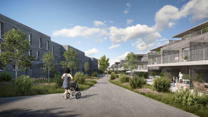 5.5-Zi-Reiheneinfamilienhäuser im Grünen, je nach Typ auf 6.5-Zimmer ausbaubar (3)
