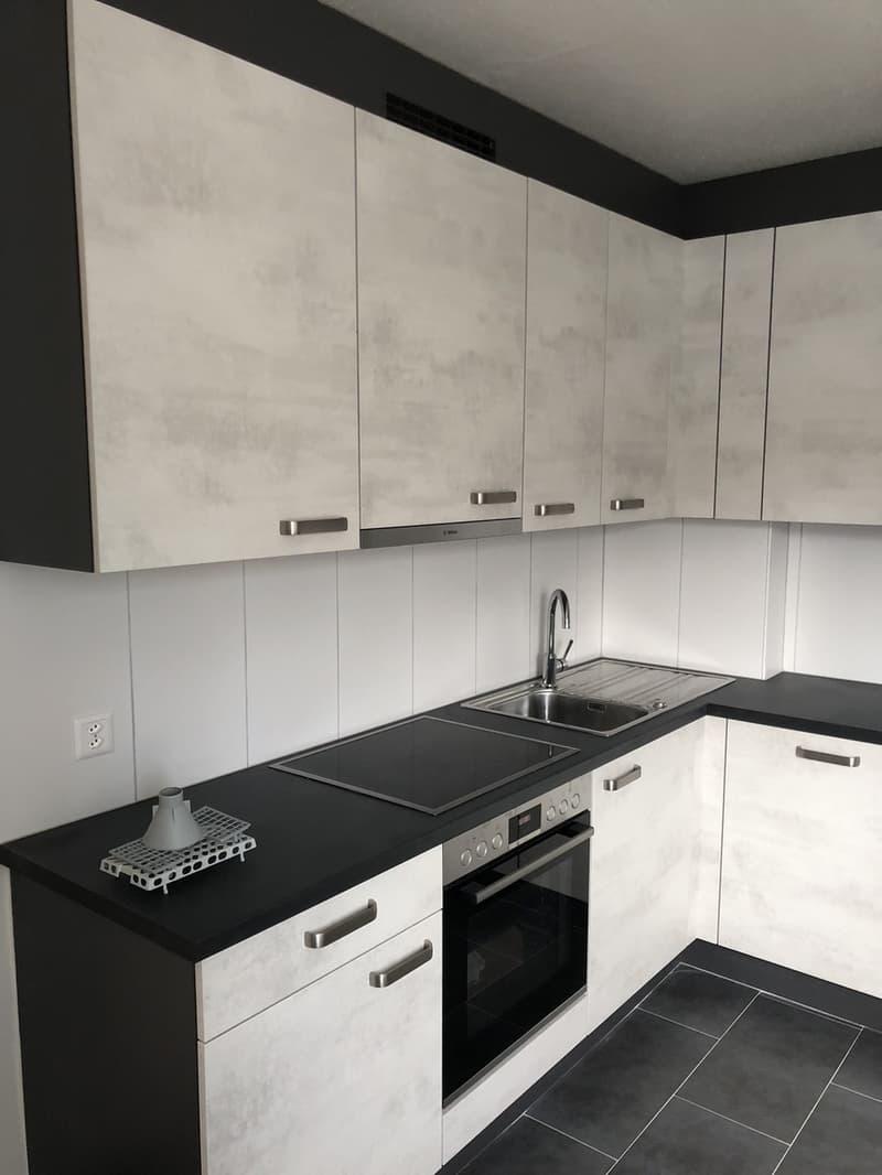 Nouveau sur le marché!Appartement splendid et modern qui vient d'etre rénové!!! (1)
