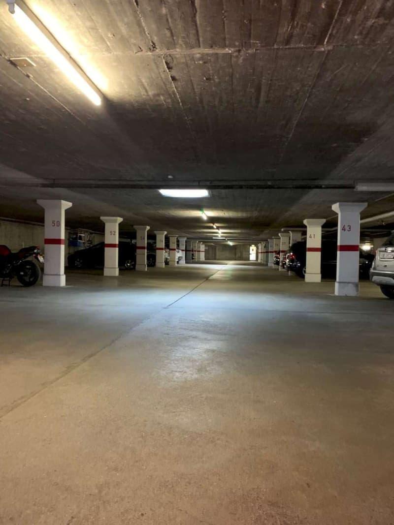 Neuer Parkplatz gesucht? (2)