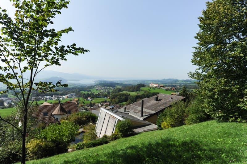 Grosszügiges Grundstück mit Berg- und Seesicht (2)