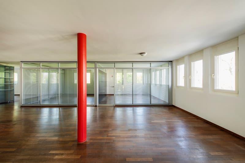 Büro- oder Praxisräume am Zürichberg (1)