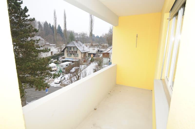 Grosse 3.5 Zimmer Wohnung zum fairen Preis (8)