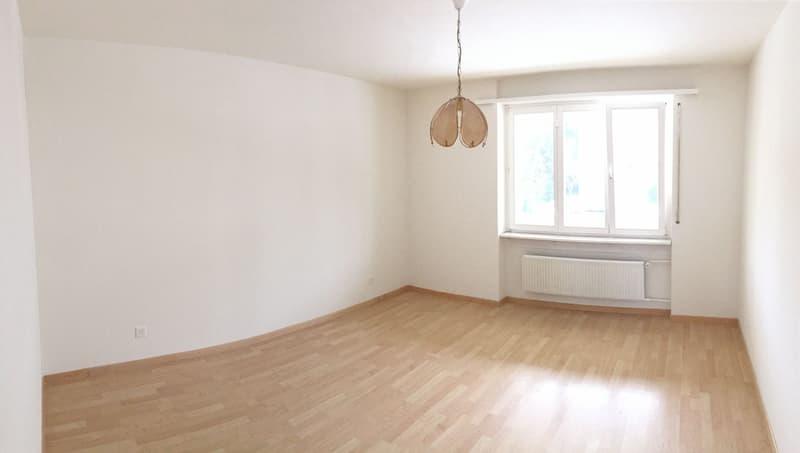 Grosse 3.5 Zimmer Wohnung zum fairen Preis (1)