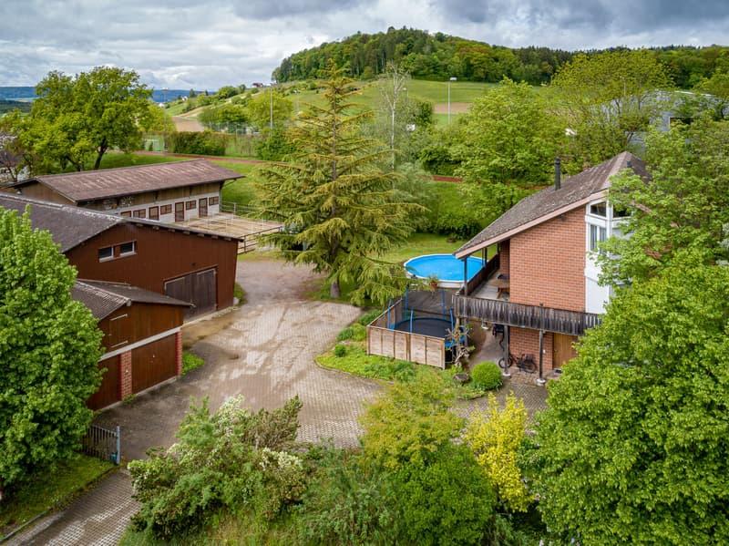 Reitsportimmobilie für gehobenen, privaten Gebrauch mit Reithalle, 8 Boxen, grossem Wohnhaus, Büros und grossem Wohnhaus (2)