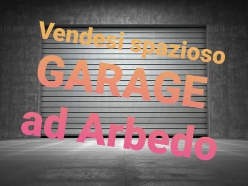 SPAZIOSO GARAGE IN ARBEDO! (1)