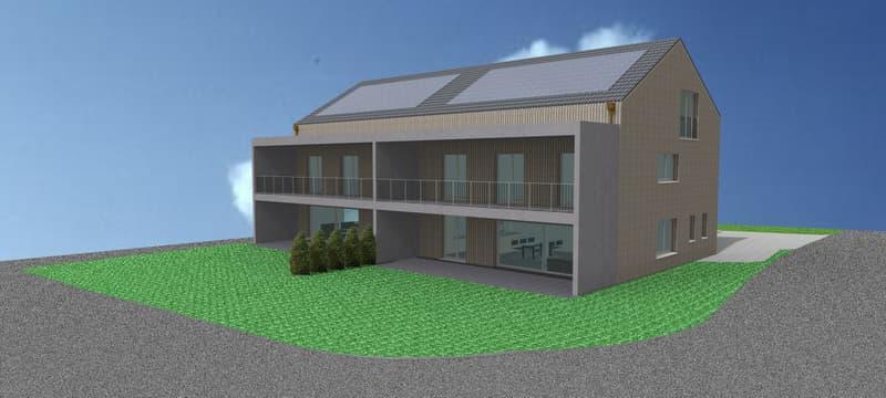 6.5 Zimmer Doppeleinfamilienhaus in Matzingen, mit Doppelgarage und Aussenabstellplatz (1)
