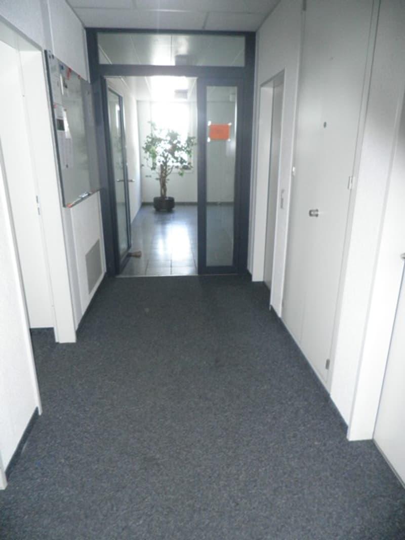 Bürogang Althardstr. 9_1